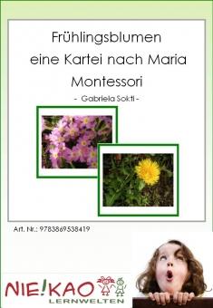 Frühlingsblumen - eine Kartei nach Maria Montessori