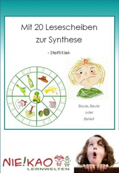 Anfangsunterricht-Mit 20 Lesescheiben zur Synthese Einzel-CD