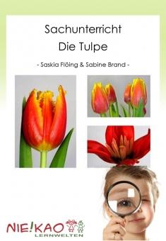 Sachunterricht - Die Tulpe