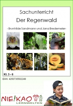 Differenzierter Sachunterricht – der Regenwald