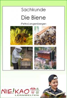 Sachunterricht - Die Biene