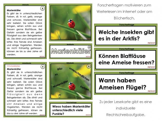 arbeitsblatt vorschule 187 rechtschreib252bungen grundschule