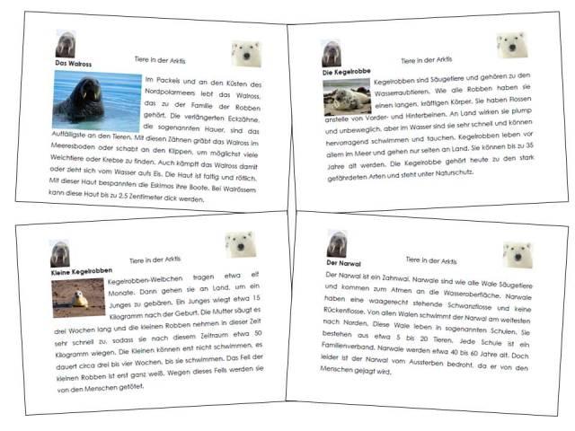 unterrichtsmaterial bungsbl tter f r die grundschule sachunterricht tiere der arktis. Black Bedroom Furniture Sets. Home Design Ideas