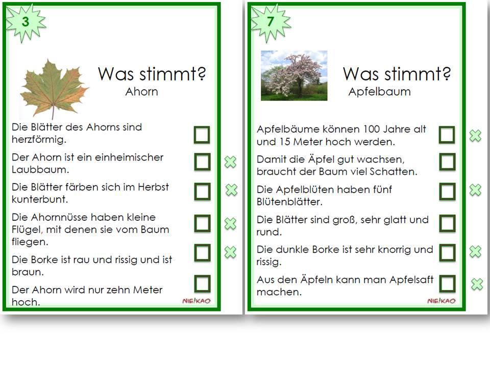 arbeitsblatt vorschule 187 5 klasse deutsch 252bungen